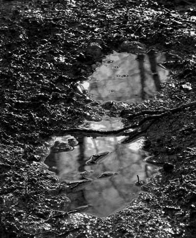 boue.jpg